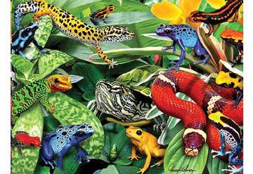 Immagine di Puzzle 3D H. Robinson: Frogs & Reptiles 500pz
