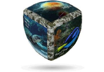 Immagine di V-Cube Sea World 3x3cm