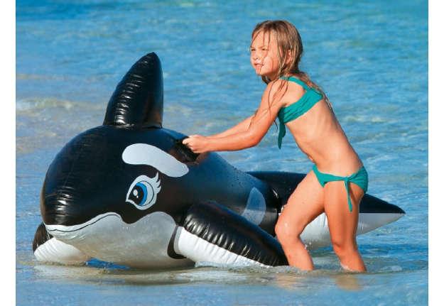 Immagine di Cavalcabile orca 193x119cm