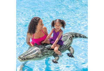 Immagine di Cavalcabile vero alligatore 170x86cm