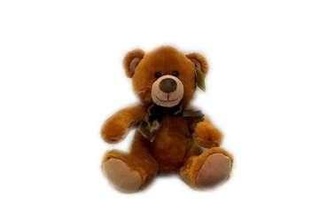 Immagine di Peluche orso 20 cm