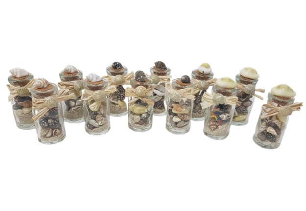 Immagine di Bottigliette con sabbia, conchiglie tappo conchiglia 8cm