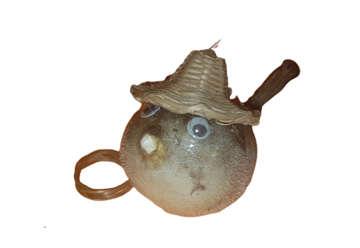 Immagine di Pesce palla con cappello Diametro 8cm