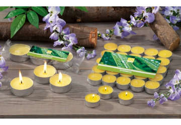 Immagine di Candele tea light citronella 3.6cm diametro