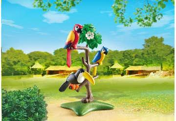 Immagine di Pappagalli e tucano su albero