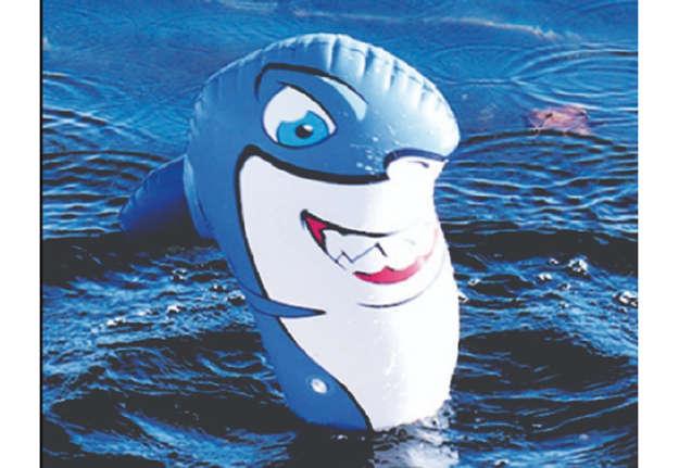 Immagine di Squalo in piedi sul surf 57x40cm