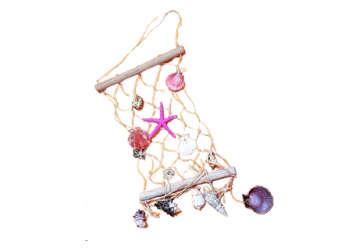 Immagine di Rete con conchiglie e stella