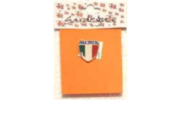 Immagine di Spilla metallo scudo Italia