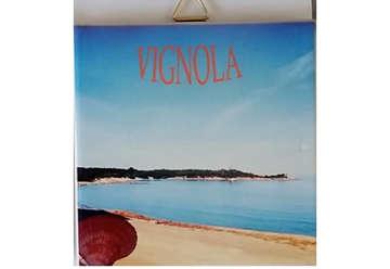 Immagine di Mattonella Ceramica Vignola 10x10cm