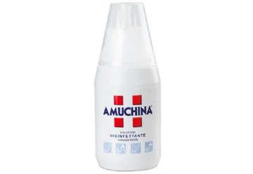 Immagine di Amuchina 250 ml
