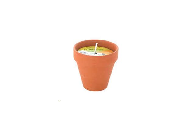 Immagine di Vasetto terracotta citronella Dim.9x8