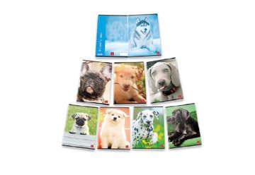 Immagine di Quaderno A4 Friendly dogs quadretti 5M