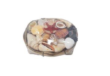 Immagine di Cestino shellpack con stella marina long 14x8x6cm