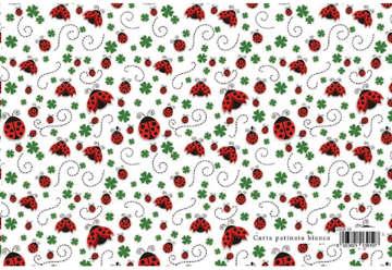 Immagine di Foglio carta regalo Fashion design - Coccinelle 70x100