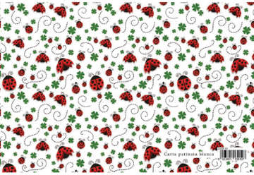 Immagine di Foglio carta regalo Fashion design - Coccinelle 70x100