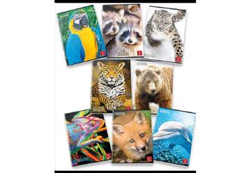 Immagine di Qauaderno A4 Pigna Animals 1R
