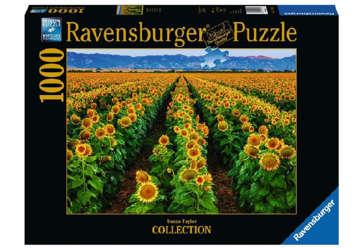 Immagine di Puzzle 1000 Pz- Campi di Girasoli